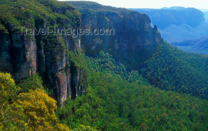 australia738: Blue Mountains, New South Wales, Australia: Blue Mountains National Park Valley, near Blackheath - UNESCO world heritage site - photo by G.Scheer - (c) Travel-Images.com - Stock Photography agency - Image Bank