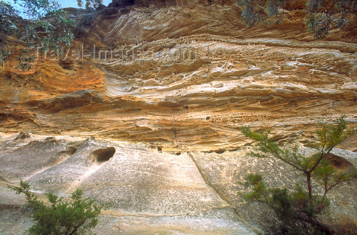 australia739: Blue Mountains, New South Wales, Australia: cave - eroded sandstone  - Blue Mountains NP - photo by G.Scheer - (c) Travel-Images.com - Stock Photography agency - Image Bank