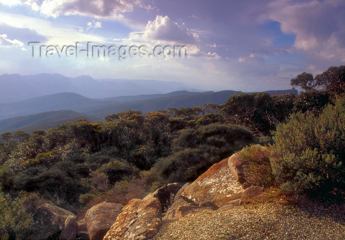 australia768: Grampians National Park, Victoria, Australia: view from Mt. William - photo by G.Scheer - (c) Travel-Images.com - Stock Photography agency - Image Bank