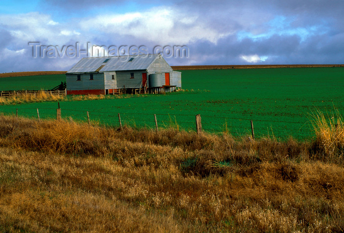 australia794: Victoria, Australia: shearing shed - photo by G.Scheer - (c) Travel-Images.com - Stock Photography agency - Image Bank