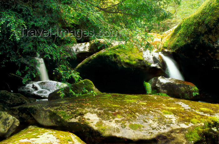 australia808: Yarra Ranges, Victoria, Australia: Yarra Ranges Cascades - photo by G.Scheer - (c) Travel-Images.com - Stock Photography agency - Image Bank