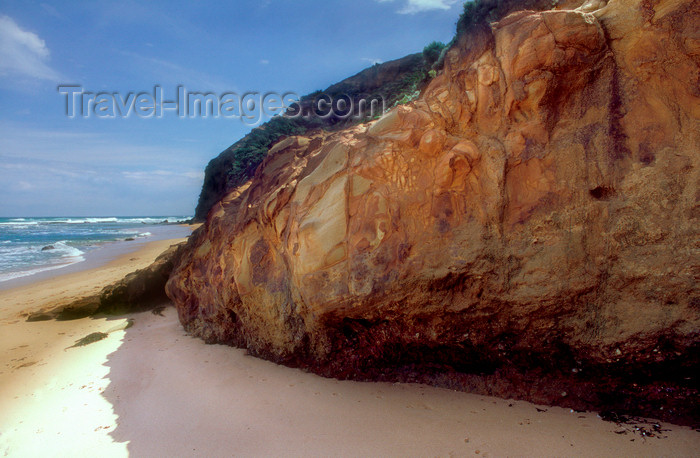 australia820: Great Ocean Road, Great Otway National Park, Victoria, Australia: Wreck Beach - photo by G.Scheer - (c) Travel-Images.com - Stock Photography agency - Image Bank