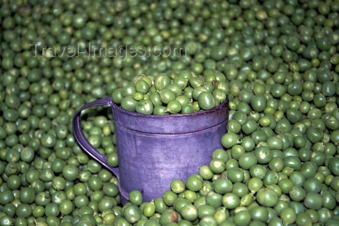 austria45: Austria - Dürnstein in der Wachau (Niederosterreich): peas in an old world shop - Erbse - Pisum sativum - ervilhas (photo by F.Rigaud) - (c) Travel-Images.com - Stock Photography agency - Image Bank