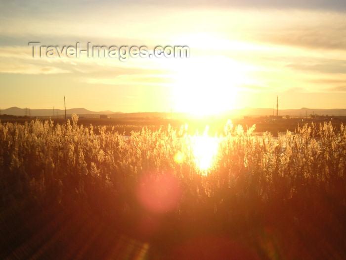 azer157: Azerbaijan - Surakhany / Suraxani - Absheron peninsula: sunset (photo by Austin Kilroy) - (c) Travel-Images.com - Stock Photography agency - Image Bank