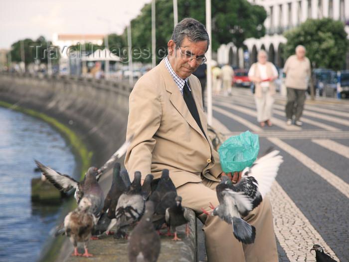 azores181: Azores / Açores - São Miguel - Ponta Delgada: pigeons' feeder - waterfront avenue / milho para os pombos - photo by A.Stepanenko - (c) Travel-Images.com - Stock Photography agency - Image Bank