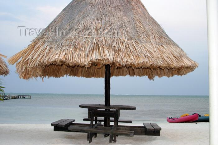 belize23: Belize - Caye Caulker: beach umbrella - photo by C.Palacio - (c) Travel-Images.com - Stock Photography agency - Image Bank