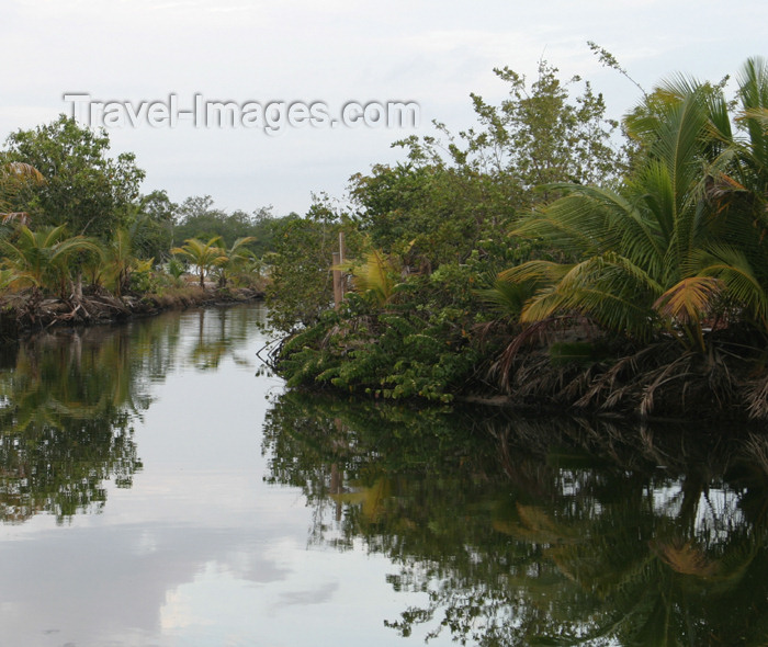 belize36: Belize - Seine Bight : lagoon - Placencia Peninsula in the Stann Creek District of southern Belize - photo by Charles Palacio - (c) Travel-Images.com - Stock Photography agency - Image Bank