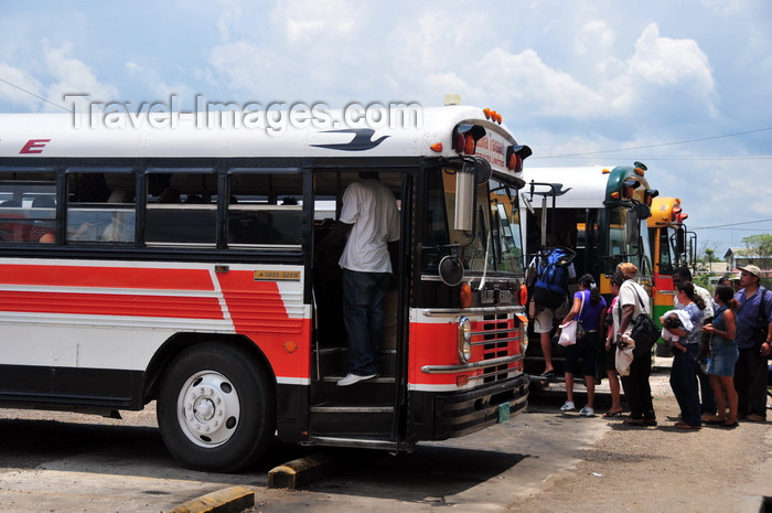 belize67: Belmopan, Cayo, Belize: bus terminal - commuters return to Belize city - Blue Bird buses - public transportation - photo by M.Torres - (c) Travel-Images.com - Stock Photography agency - Image Bank