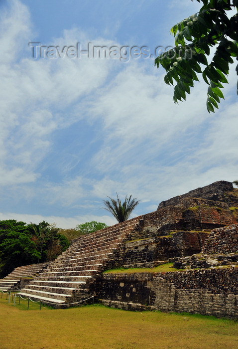 belize77: Altun Ha Maya city, Belize District, Belize: Temple of the Green Tomb, A-1 - Plaza A - the site is the most extensively excavated ruin in Belize - photo by M.Torres - (c) Travel-Images.com - Stock Photography agency - Image Bank