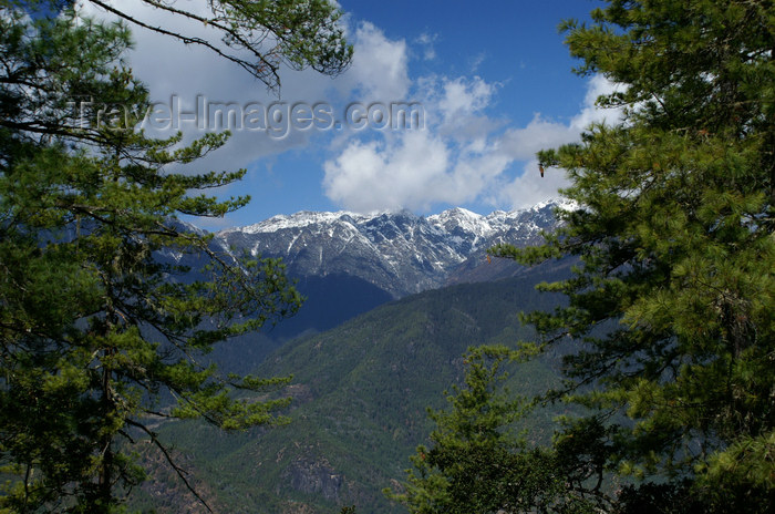 bhutan125: Bhutan - Paro dzongkhag - Himalaya peaks, seen from the way up to Taktshang Goemba - photo by A.Ferrari - (c) Travel-Images.com - Stock Photography agency - Image Bank