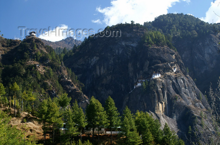 bhutan126: Bhutan - Paro dzongkhag - forest - great view on the way up to Taktshang Goemba - photo by A.Ferrari - (c) Travel-Images.com - Stock Photography agency - Image Bank