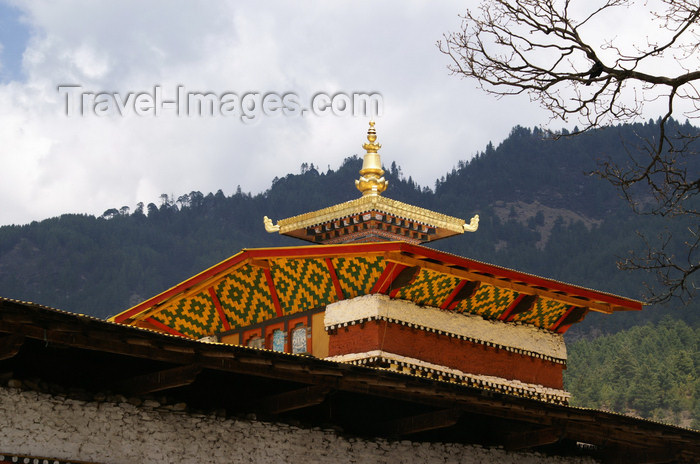 bhutan13: Bhutan - Bumthang valley - shiny roof of Tamshing Goemba monastery - photo by A.Ferrari - (c) Travel-Images.com - Stock Photography agency - Image Bank