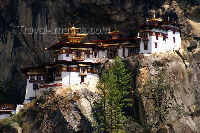 bhutan130: Bhutan - Paro dzongkhag - Taktshang Goemba - hangs on a cliff at 3,120 metres - photo by A.Ferrari - (c) Travel-Images.com - Stock Photography agency - Image Bank