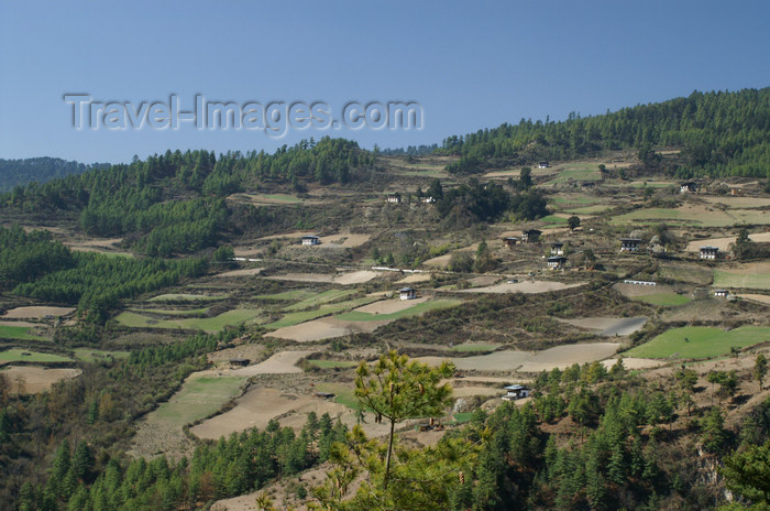 bhutan148: Bhutan - Houses and fields, on the way to the Haa valley - photo by A.Ferrari - (c) Travel-Images.com - Stock Photography agency - Image Bank