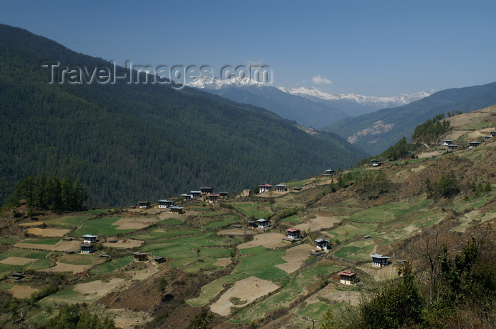 bhutan153: Bhutan - Houses and fields, in the Haa valley - photo by A.Ferrari - (c) Travel-Images.com - Stock Photography agency - Image Bank