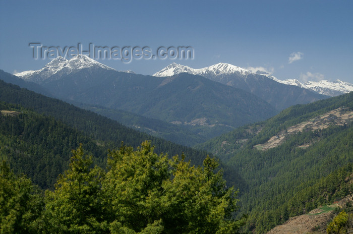 bhutan154: Bhutan - Himalaya peaks, seen from the Haa valley - photo by A.Ferrari - (c) Travel-Images.com - Stock Photography agency - Image Bank