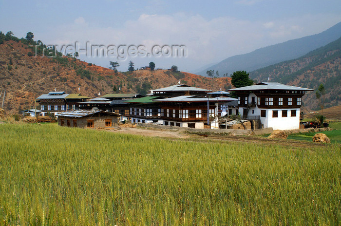 bhutan254: Bhutan - the tiny settlement of Pana - photo by A.Ferrari - (c) Travel-Images.com - Stock Photography agency - Image Bank