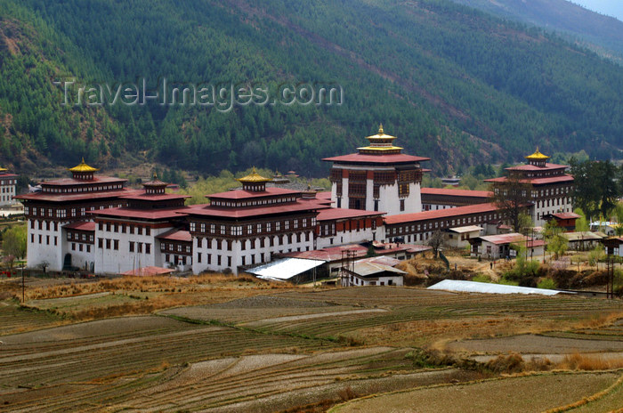 bhutan33: Bhutan - Thimphu - rice paddies and Trashi Chhoe Dzong - photo by A.Ferrari - (c) Travel-Images.com - Stock Photography agency - Image Bank