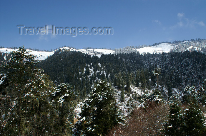 bhutan389: Bhutan - Ura valley, Bumthang District - winter landscape - photo by A.Ferrari - (c) Travel-Images.com - Stock Photography agency - Image Bank
