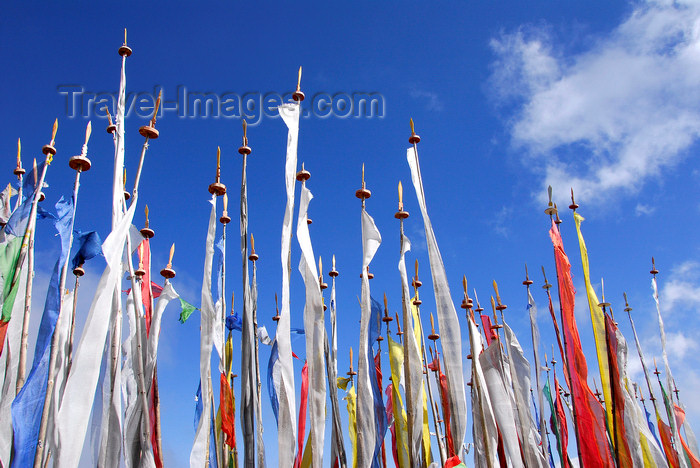 bhutan402: Bhutan, Cheli La pass, near Paro: prayer flags - photo by J.Pemberton - (c) Travel-Images.com - Stock Photography agency - Image Bank