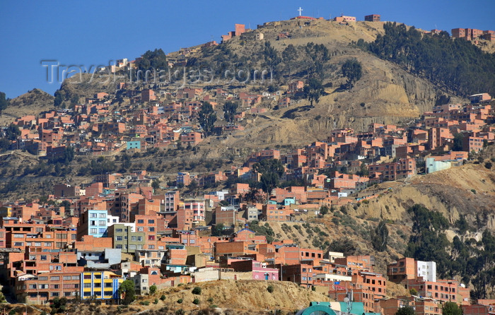 bolivia43: La Paz, Bolivia: northern suburbs and the woods of the Bosquecillo area - hill top cross - photo by M.Torres - (c) Travel-Images.com - Stock Photography agency - Image Bank