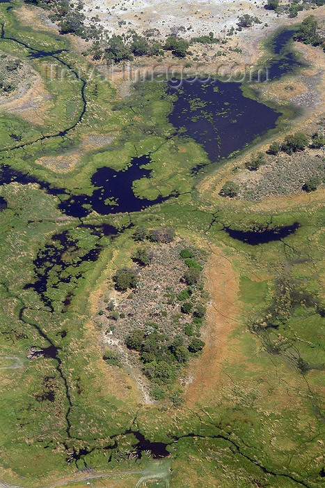 botswana14: Okavango delta, North-West District, Botswana: from the air - swamp in the Kalahari Desert - endorheic basin - Okavango Alluvial Fan - photo by J.Banks - (c) Travel-Images.com - Stock Photography agency - Image Bank