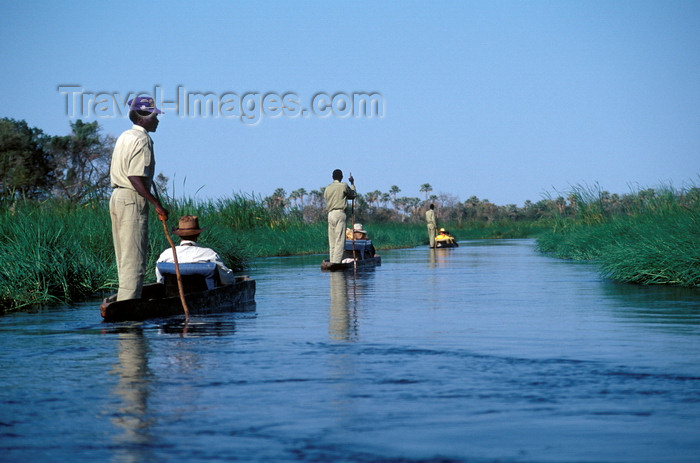botswana60: Okavango delta, North-West District, Botswana: Mokoros, boats made of hollowed out logs, are a wonderful way to explore the world's largest inland delta - punting - photo by C.Lovell - (c) Travel-Images.com - Stock Photography agency - Image Bank