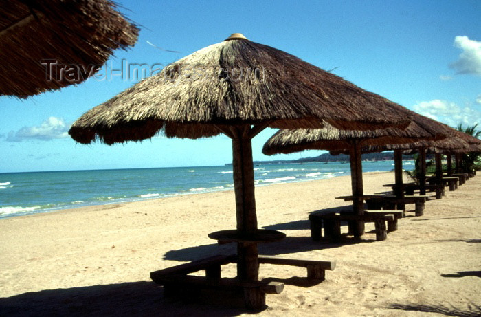 brazil111: Brazil / Brasil - Maragoji / Maragogi (Alagoas): parasols on the beach / parasois na praia - photo by F.Rigaud - (c) Travel-Images.com - Stock Photography agency - Image Bank