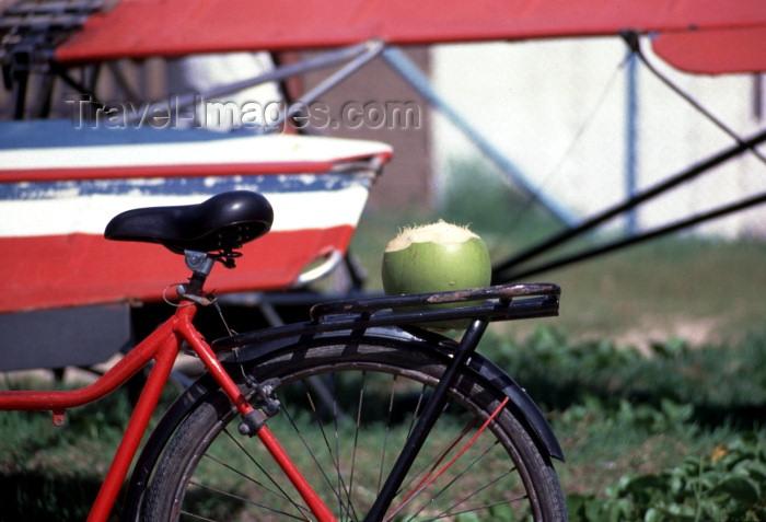 brazil112: Brazil / Brasil - Maragoji (Alagoas): bike with coconut / bicicleta com coco - photo by F.Rigaud - (c) Travel-Images.com - Stock Photography agency - Image Bank