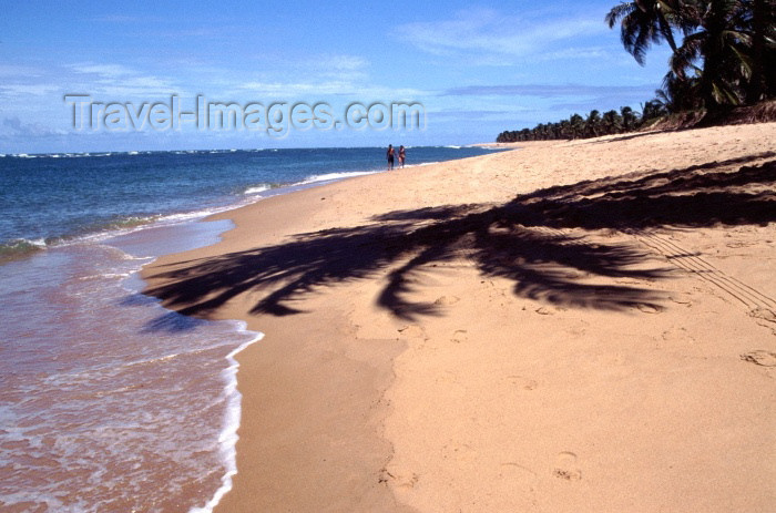 brazil125: Roteiro, Alagoas, Brazil / Brasil - Gunga beach / Praia do Gunga - photo by F.Rigaud - (c) Travel-Images.com - Stock Photography agency - Image Bank