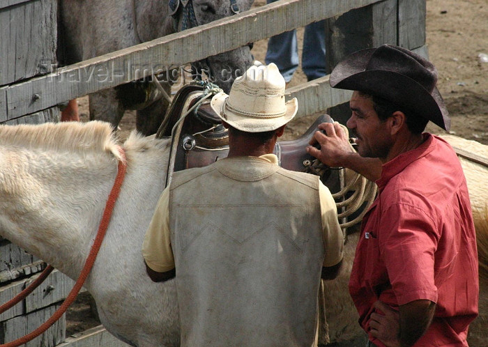 brazil163: Brazil / Brasil - Cachoeira (Bahia): cowboys / vaqueiros - photo by N.Cabana - (c) Travel-Images.com - Stock Photography agency - Image Bank