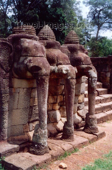 cambodia32: Angkor, Cambodia / Cambodge: Phimeankas - terrace of the elephants - Angkor Thom - photo by Miguel Torres - (c) Travel-Images.com - Stock Photography agency - Image Bank
