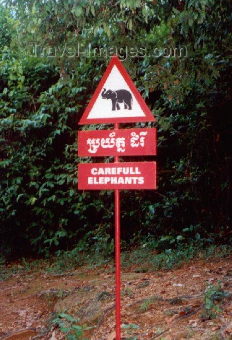cambodia47: Angkor, Cambodia / Cambodge: Phnom Bakeng - 'careful elephants'!  - photo by Miguel Torres - (c) Travel-Images.com - Stock Photography agency - Image Bank