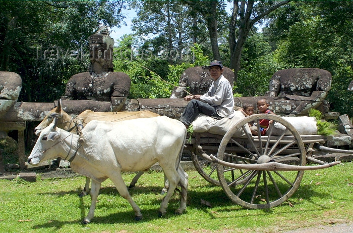 cambodia98: Angkor, Cambodia / Cambodge: Angkor Thom - a farmer, using a traditional ox cart, transports produce and his youngsters past ancient carvings near the South Gate - photo by R.Eime - (c) Travel-Images.com - Stock Photography agency - Image Bank