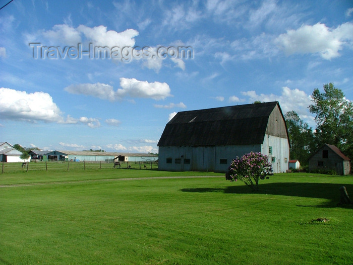 canada134: Canada / Kanada - Pelham / Fenwick area, Ontario: barn - farm - rural setting - photo by R.Grove - (c) Travel-Images.com - Stock Photography agency - Image Bank