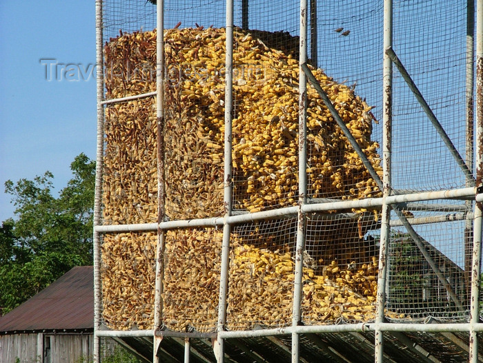 canada137: Wainfleet, Ontario, Canada / Kanada: corn storage - agriculture - photo by R.Grove - (c) Travel-Images.com - Stock Photography agency - Image Bank