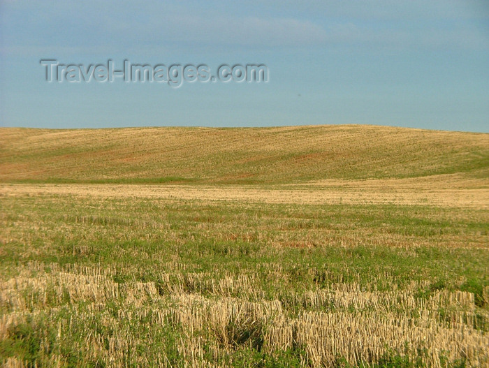 canada138: Pelham/Fenwick, Ontario, Canada / Kanada: in the fields - photo by R.Grove - (c) Travel-Images.com - Stock Photography agency - Image Bank
