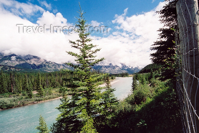 canada196: Canada / Kanada - Canmore (Alberta): following the Bow river - photo by M.Torres - (c) Travel-Images.com - Stock Photography agency - Image Bank