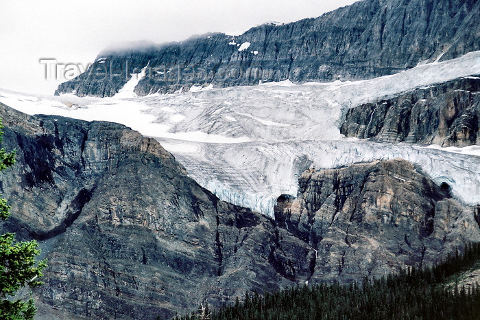canada200: Canada / Kanada - Icefields Park (Alberta): a glacier - photo by M.Torres - (c) Travel-Images.com - Stock Photography agency - Image Bank