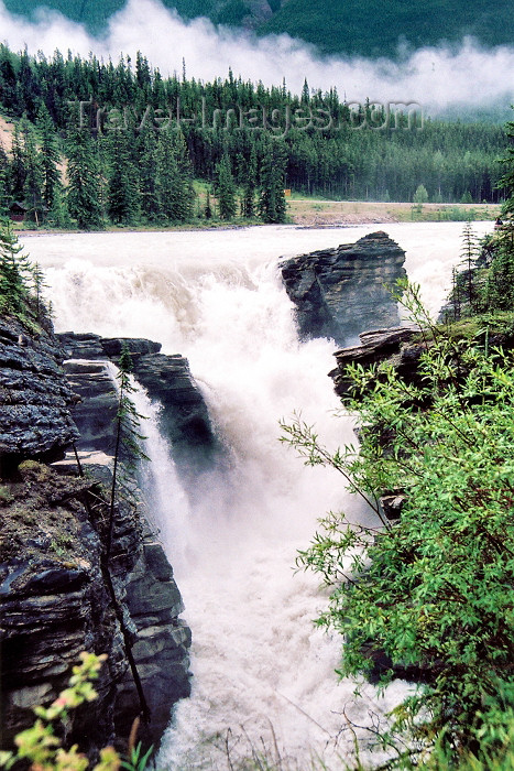 canada203: Canada / Kanada - Jasper National Park (Alberta): Athabasca falls - photo by M.Torres - (c) Travel-Images.com - Stock Photography agency - Image Bank