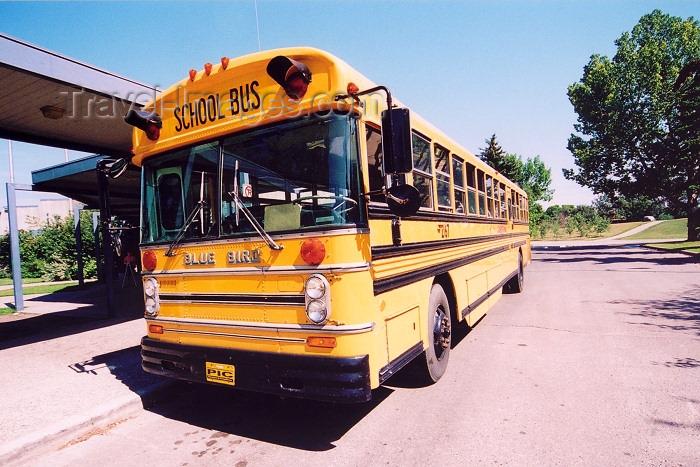 canada251: Canada / Kanada - Calgary, Alberta: Blue Bird school bus at Fort Calgary Historic Park - photo by M.Torres - (c) Travel-Images.com - Stock Photography agency - Image Bank