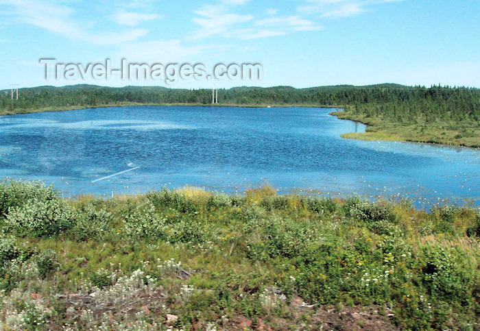 canada343: Canada / Kanada - Burin Peninsula, Newfoundland: lake and forest - photo by B.Cloutier - (c) Travel-Images.com - Stock Photography agency - Image Bank