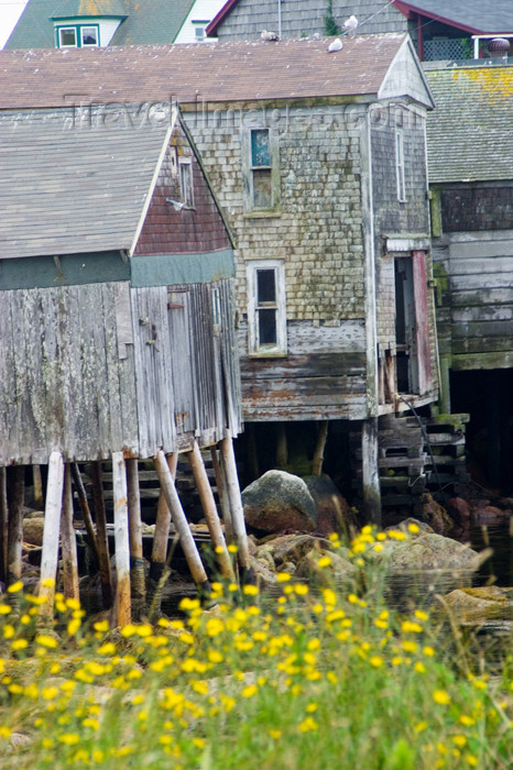 canada380: Old wooden house on stilts at low tide near Peggy's Cove, Nova Scotia, Canada - photo by D.Smith - (c) Travel-Images.com - Stock Photography agency - Image Bank