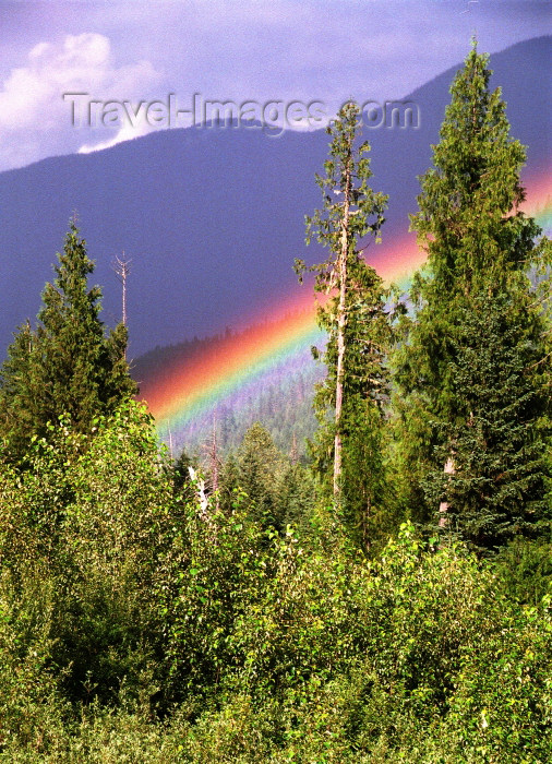 canada396: Canada / Kanada - BC: forest and rainbow - photo by G.Friedman - (c) Travel-Images.com - Stock Photography agency - Image Bank