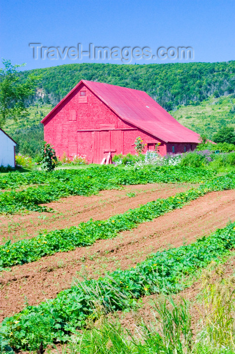 canada401: Scenic View of reed barn in the Annapolis Valley, Nova Scotia, Canada - photo by D.Smith - (c) Travel-Images.com - Stock Photography agency - Image Bank
