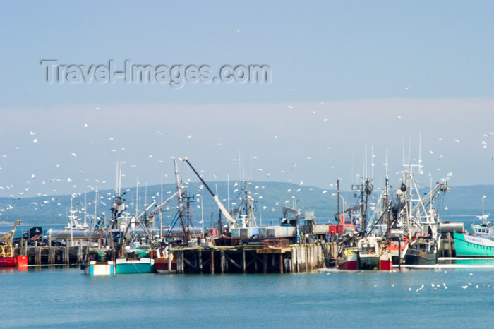 canada414: Scenic view of the commercial fishing pier in Digby, Nova Scotia, Canada - photo by D.Smith - (c) Travel-Images.com - Stock Photography agency - Image Bank