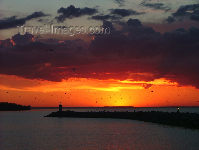 canada473: Canada - Ontario - Lake Ontario: sunset, pier and seaguls - photo by R.Grove - (c) Travel-Images.com - Stock Photography agency - Image Bank
