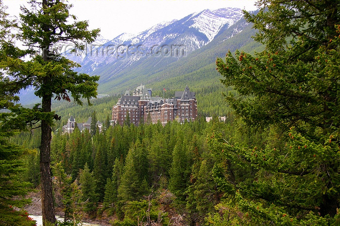canada541: Banff, Alberta, Canada: Springs Hotel - photo by J.Cave - (c) Travel-Images.com - Stock Photography agency - Image Bank