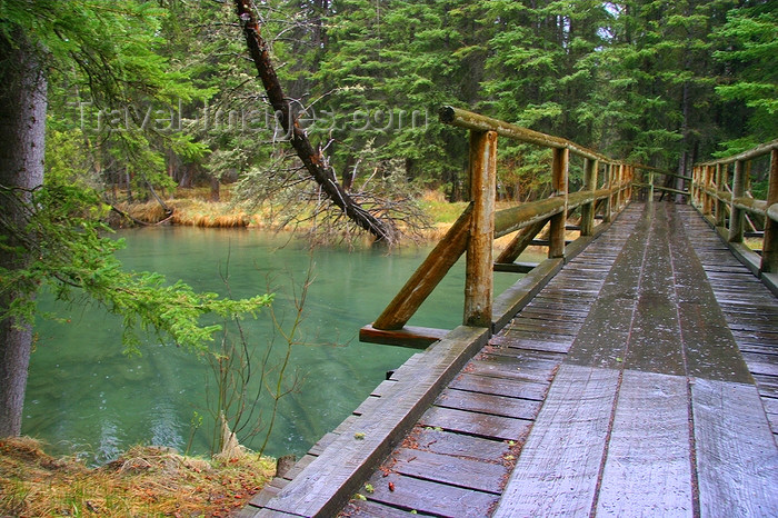 canada548: Banff, Alberta, Canada: Bow River Trail - photo by J.Cave - (c) Travel-Images.com - Stock Photography agency - Image Bank