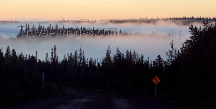 canada62: Canada / Kanada - Saskatchewan: mist over the trees - sunrise - photo by M.Duffy - (c) Travel-Images.com - Stock Photography agency - Image Bank